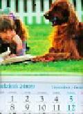 Kalendarz 2010 KT16 Kasia trójdzielny