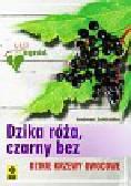 Zeitlhofler Andreas - Dzika róża czarny bez. Dzikie krzewy owocowe