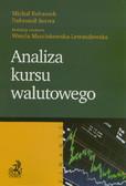 Rubaszek Michał, Serwa Dobromił - Analiza kursu walutowego