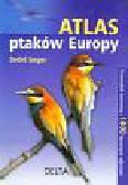 Singer Detlef - Atlas ptaków Europy. Przewodnik terenowy z 1400 barwnymi zdjęciami