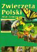 Kokurewicz Dorota - Zwierzęta Polski Atlas ilustrowany