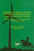 Jabłoński Władysław, Wnuk Jan - Odnawialne źródła energii w polityce energetycznej Unii Europejskiej i Polski. Efektywne zarządzanie inwestycjami - studia przypadków
