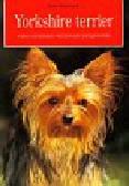 Biała-Gauss Karin - Yorkshire terrier. wybór, utrzymanie, wychowanie, pielęgnowanie