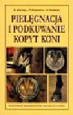 Kolstrung Ryszard, Silmanowicz Piotr, Stachurska Anna - Pielęgnacja i podkuwanie kopyt koni