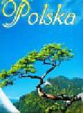 Kalendarz 2011 TW01 Polska trójdzielne 13 kart