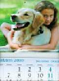 Kalendarz 2011 KT16 Oliwka trójdzielny