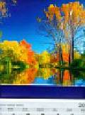 Kalendarz 2011 T 58 Barwy jesieni