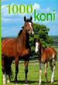 Schober Ulricke - 1000 koni