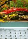 Kalendarz 2011 T 64 Mostek