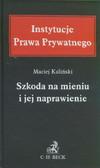 Kaliński Maciej - Szkoda na mieniu i jej naprawienie