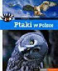 Wąsik Sławomir - Ptaki w Polsce Piękne ciekawe wyjątkowe