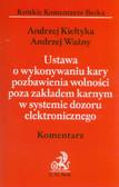 Kiełtyka Andrzej, Ważny Andrzej - Ustawa o wykonywaniu kary pozbawienia wolności poza zakładem karnym w systemie dozoru elektronicznego. Komentarz