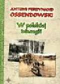 Ossendowski Antoni Ferdynand - W polskiej dżungli
