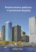 red. Fehler Włodzimierz - Bezpieczeństwo publiczne w przestrzeni miejskiej