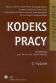Florek Ludwik (red.) - Kodeks pracy. Komentarz