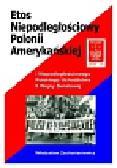 Zachariasiewicz Władysław - Etos niepodległościowy Polonii amerykańskiej