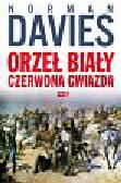 Davies Norman - Orzeł biały czerwona gwiazda. Wojna polsko-bolszewicka 1919–1920