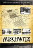 Pelt Robert Jan, Dwork Deborah - Auschwitz. Historia miasta i obozu
