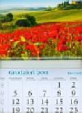 Kalendarz 2012 KT03 Maki trójdzielny