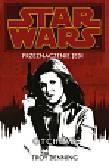 Denning Troy - Star Wars Przeznaczenie Jedi 3 Otchłań