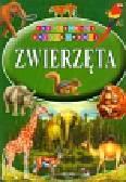Zwierzęta Ilustrowana Encyklopedia