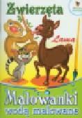 Zwierzęta Lama Malowanki wodą malowane
