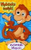 Wędrówka małpki Zwierzaki kłapaki