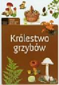 Królestwo grzybów