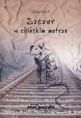 Qing Qiu Zi - Szczur w chińskim metrze