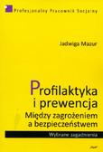 Mazur Jadwiga - Profilaktyka i prewencja. Między zagrożeniem a bezpieczeństwem. Wybrane zagadnienia