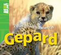 Costain Meredith - Gepard Życie dzikich zwierząt