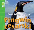 Costain Meredith - Pingwin cesarski Życie dzikich zwierząt