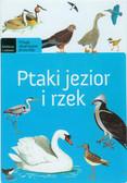 Brodacki Michał - Ptaki jezior