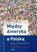 Między Ameryką a Polską. Opolskie spotkania socjologiczne