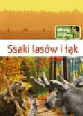 Wilamowska Małgorzata - Ssaki lasów i łąk