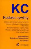 Kodeks cywilny. wprowadzenie Zbigniewa Radwańskiego