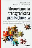 Woźniak-Miszewska Magdalena - Mezoekonomia transgraniczna przedsiębiorstw. Studium bezpośrednich inwestycji zagranicznych w rozwoju regionów ekonomicznych