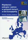 red. Potorski Radosław - Współpraca policyjna i sądowa w sprawach karnych w Unii Europejskiej. Geneza, struktury, działania