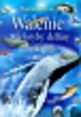 Beckelman Laurie - Walenie wieloryby delfiny i morświny