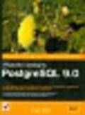 Smith Gregory - Wysoko wydajny PostgreSQL 9.0