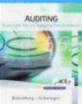 Larry Rittenberg - Auditing 3ed