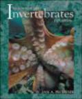 Jan Pechenik - Biology of the Invertebrates