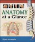 Sibani Mazumdar,S Mazumdar - Anatomy at a Glance