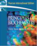 Robert Horton,David Rawn,Raymond Ochs - Principles of Biochemistry 4e