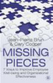 Cary Cooper,Jean-Pierre Brun - Missing Pieces