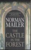 N Mailer - Castle in the Forest