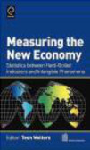 Wolters - Measuring the New Economy
