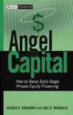 Gerald Benjamin,Joel B. Margulis - Angel Capital