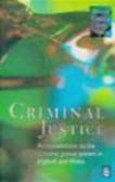 Malcolm Davies,Hazel Croall,Jane Tryer - Criminal Justice