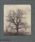 Geoffrey Batchen - William Henry Fox Talbot